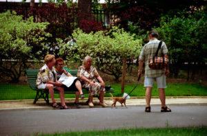 vieilles-dames-banc-public-chien-en-laisse